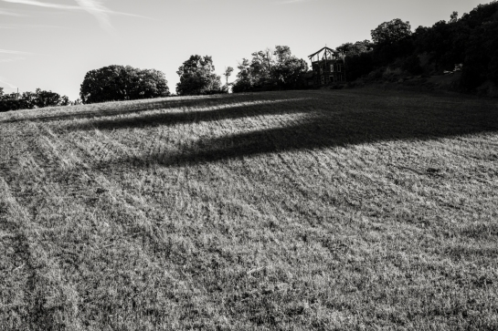 Long Shadows over a mown Field