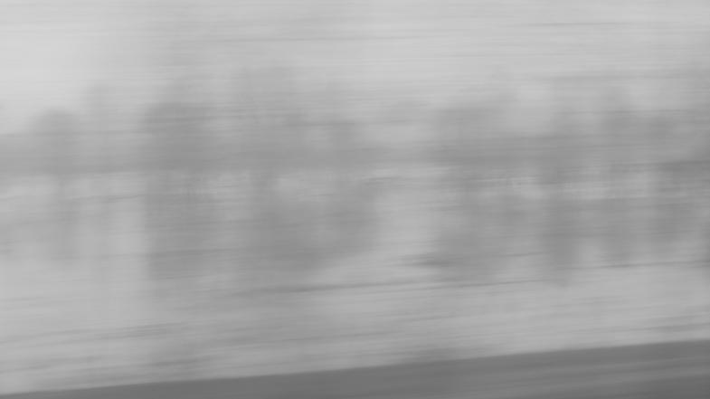 Gray Speed