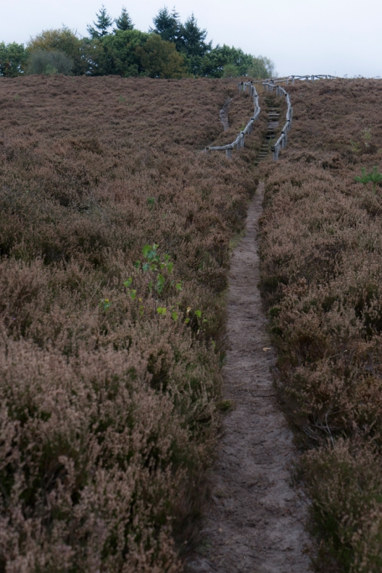 The Path to the Stairs to the Top