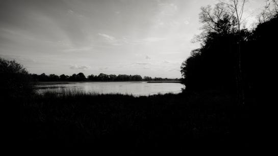 Different Mood, different Landscape.. prt3
