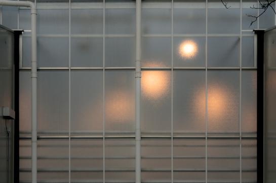 On a Glass House prt12