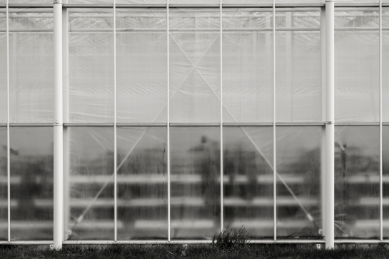 On a Glass House prt10