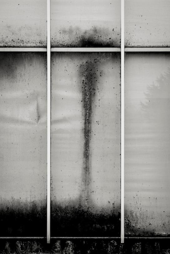 On a Glass House prt21