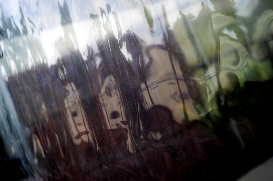 On a Plastic Window prt3